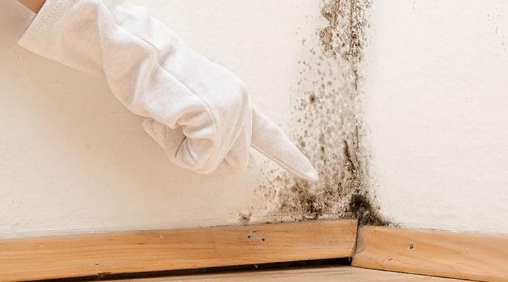 نکاتی دربارهٔ تمیز کردن سقف آشپزخانه
