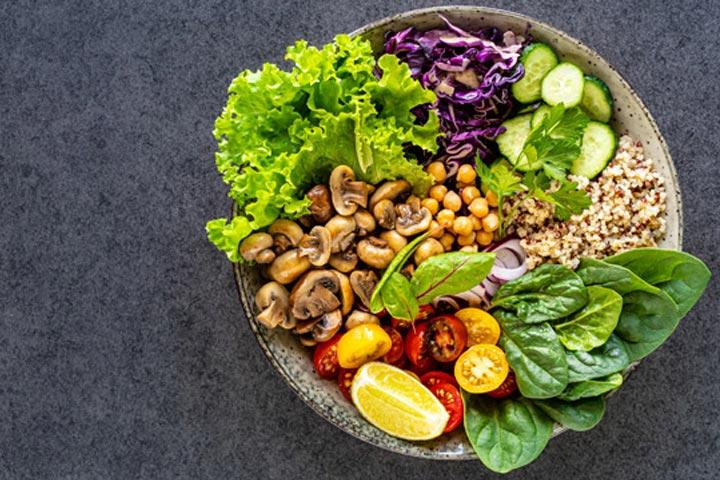 انواع گیاه خواران را خودمانیتر بشناسید